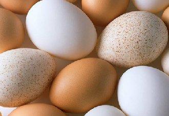 鸡蛋上有斑点?常见的七种问题蛋及形成原因