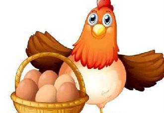 蛋鸡产蛋期间遇到换季如何做好鸡舍内的通风管理