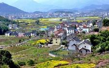 江苏:落实乡村振兴战略明确十项重点