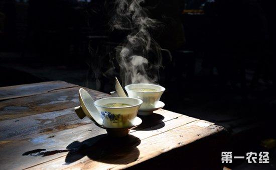 古代喝茶 矢量图