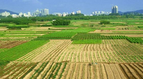 国家拨付50.9亿轮作休耕补贴如何发放?农民能拿到补贴吗?