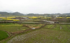武汉:推出首个农村集体资产交易平台