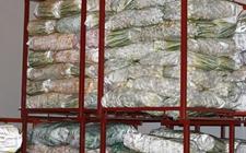 广西嘉会:鼓励农民建冷库和烘房 配套设施惠及5000多村民