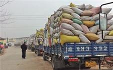 """发改委:加强粮食收购市场监管 防止出现""""卖粮难""""的问题"""