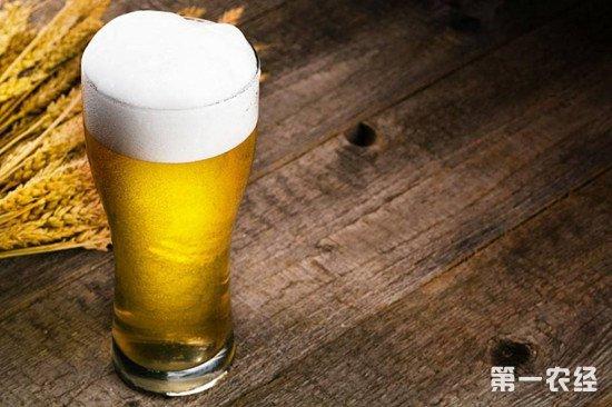 啤酒洗头有什么好处?