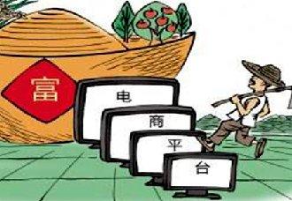 <b>安徽宿州灵璧县:大力发展农村电子商务鼓励创业就业 实现农民增收致富</b>