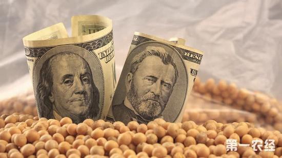 """因失去中国市场 美国大豆和猪肉""""无人买单"""""""