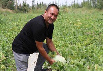 <b>新疆巴楚县:苏来曼·肉孜利用农村淘宝卖出留香瓜 走出自己的致富路</b>