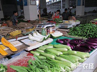 山东济阳:8月份果蔬粮油农副价格涨跌情况