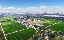 <b>湖北:加强人才项目建设 培育乡村振兴中坚力量</b>