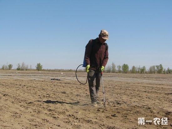 生物液态地膜:多功能可降解,有利于解决养殖场废弃物以及白色污染
