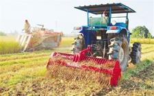 <b>黑龙江:推进农业种植结构性改革 农业生产效益收入增加</b>