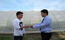 江苏宿迁:鼓励大学生返乡发展 为当地经济发展增活力