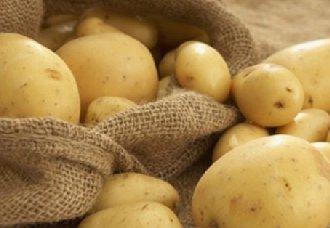 四种马铃薯常见的病害以及防治措施