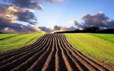 河北:调整农业生产结构 划定十大优势农产品区域