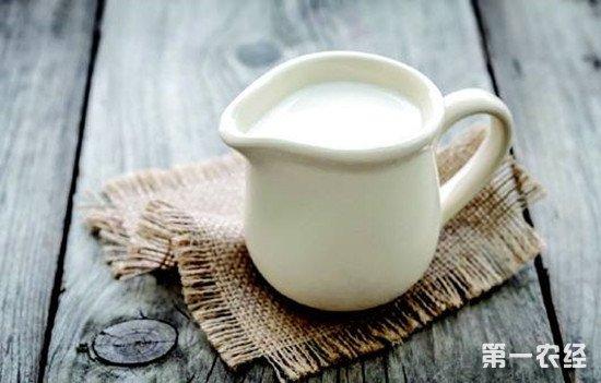 喝酒时到底能不能喝牛奶?