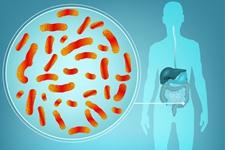 从肠道菌群到精准营养,华大助力健康产业新发展