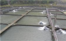 2018年我国水产养殖业扶持政策有哪些?