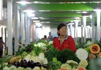 河南石家庄:全面整治食品市场 保证市民的食用安全