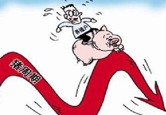 <b>农业部:2018年9月中下旬猪价会再经历降价</b>
