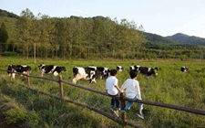 山东沂水县:发展休闲农业产业 促进农业转型升级