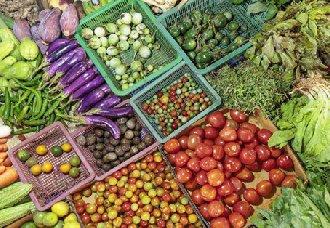 海南海口:确保蔬菜价格能保持平稳状态 让市民买到平价菜