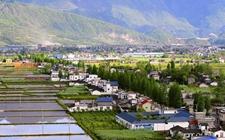 广东:多方面多任务推进乡村振兴的实行