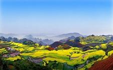 """贵州:打出""""五张王牌"""" 促进与京津冀的产业扶贫合作"""