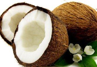 几种椰子常见的病虫害以及防治措施
