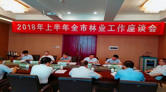 陕西铜川:召开2018年上半年全市林业工作座谈会