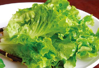 生菜一斤多少钱?8月17日生菜市场价格