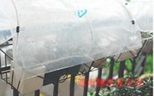 夏季养花怎么预防雨淋?介绍几种遮雨棚的制作方法