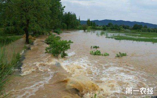 我国多地迎强降雨 国家防总部署防汛工作