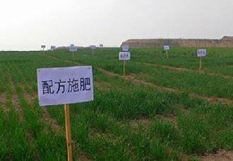 """南京:使用测土配方施肥是""""化肥减量增效""""的重大举措"""