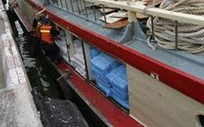 广东佛山:查获427吨走私冻肉,价值高达2000万元