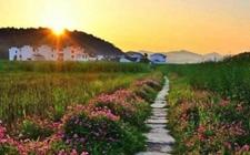 湖南:出台20条国土政策 助推乡村振兴顺利实施