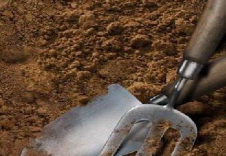 """甘肃:使用""""亲土1号""""改变土壤因素 既节约成本又增产"""