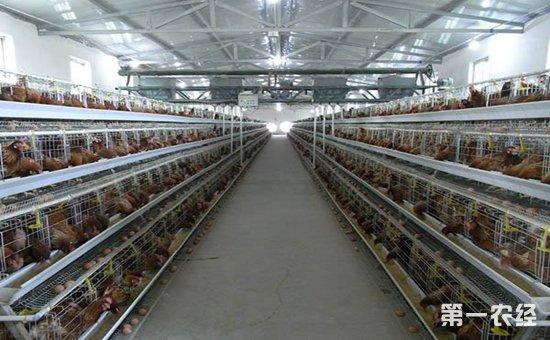 畜禽养殖场