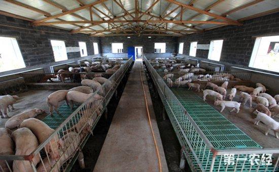 ② 采用分段式饲养来设计猪场规划:如养猪场至少应该有:配种舍