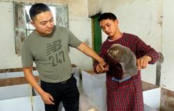 退伍青年刘小兵返乡养竹鼠 带领贫困户一起脱贫奔康
