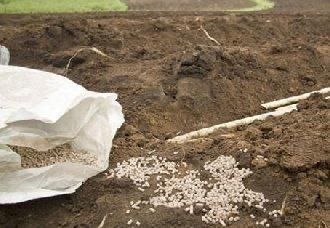 山东:大力推广减肥增效技术 降低农药化肥使用量
