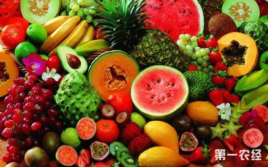 山西太原上周水果价格整体出现上涨