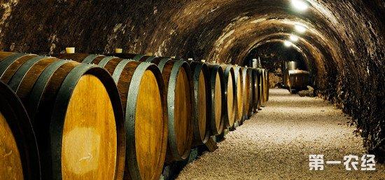 葡萄酒为什么要用橡木桶来装?