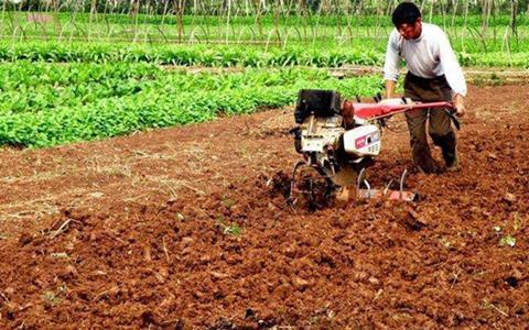 中国农业耕地轮作休耕试点正有力推进
