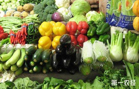 广西新柳邕市场蔬菜价格因强降雨四周连续上涨