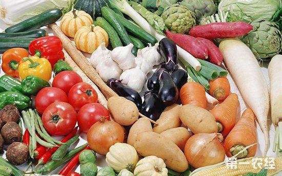 江苏凌家塘市场蔬菜供应继续偏紧价格上扬