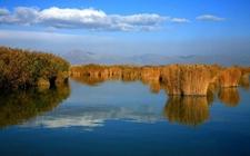 宁夏:保护有限的湿地资源 共享人类成果