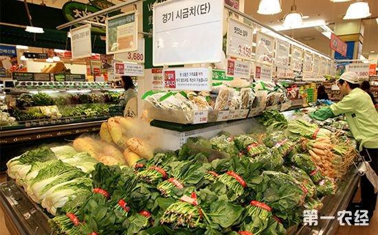 受高温和降雨影响 9月韩国蔬菜价格飙升
