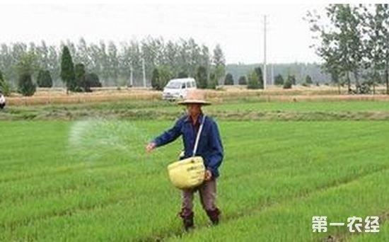 湖南推动化肥减量增效 已实现连续4年负增长