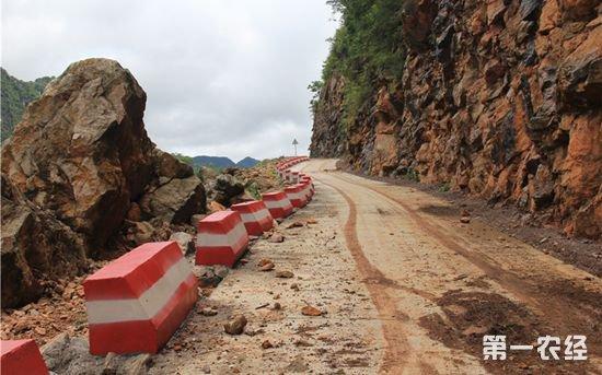 四好农村路:去年全国新改建农村公路约29万公里